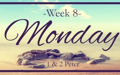 Week 8 – These Are The Last Days