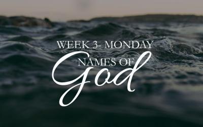 Week 3 – Prince of Peace
