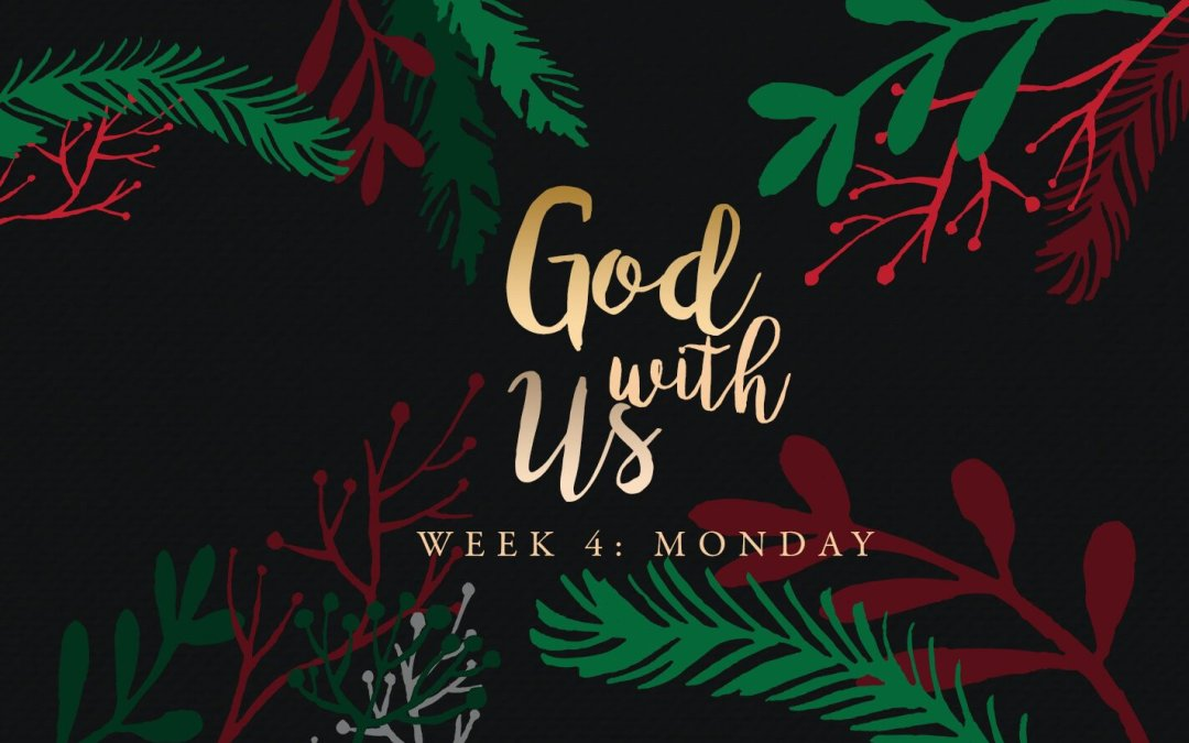 Week 4: How you can help the world see Jesus this Christmas…