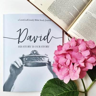 David Journal