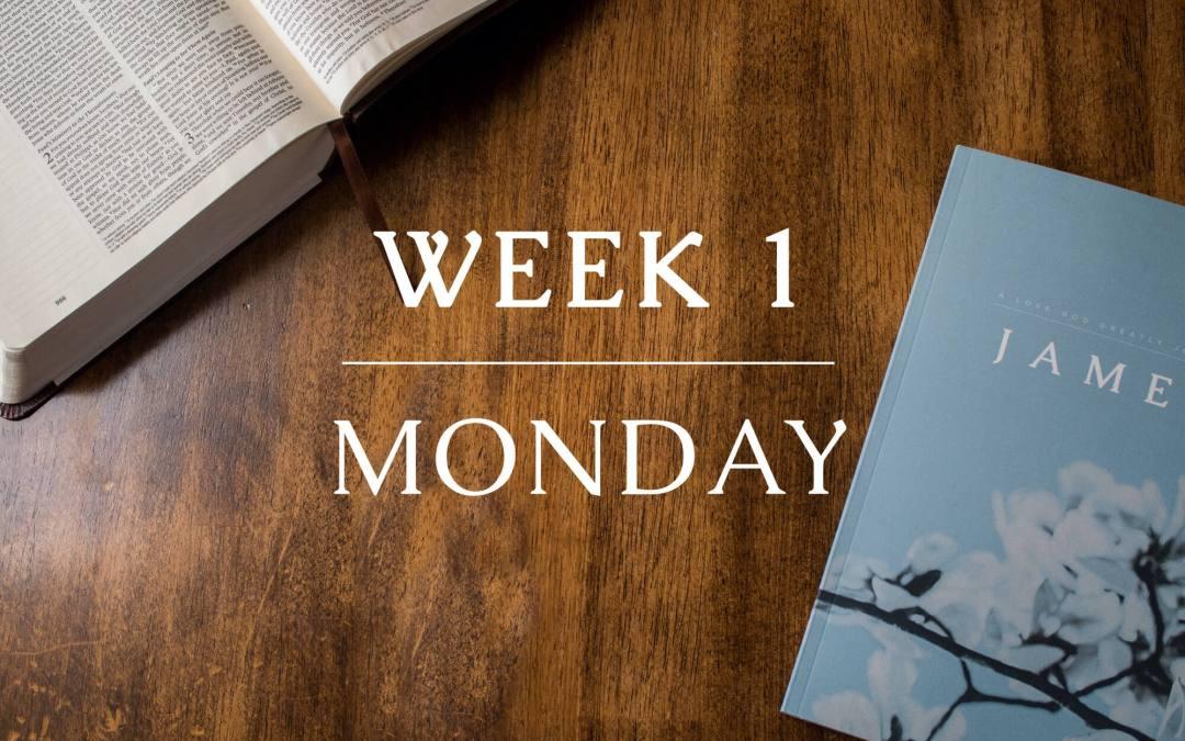 James Week 1 – Choosing Joy in the Midst of Trials