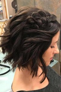 Braided Short Hairstyles picture1