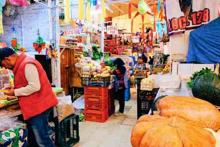 The incredible Mercado Coyocan, one of the top things to do in Mexico City