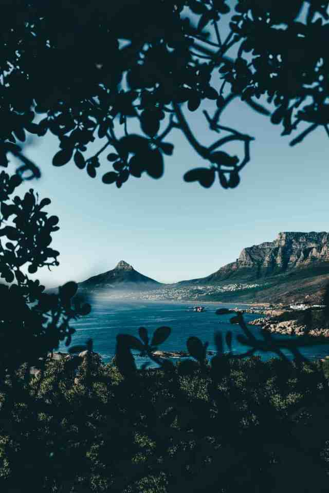 View of Table Mountain and Lions Head from Chapman's Peak drive, one of the top things to do in Cape Town