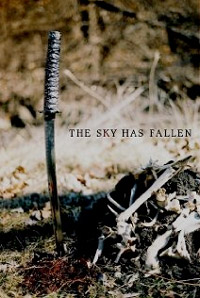 The Sky has fallen cover