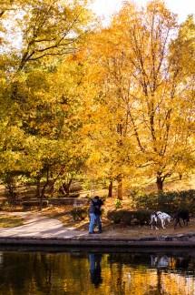 fall-proposal-brent-gumminger-photography-7