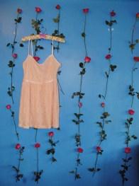 the peach lace dress