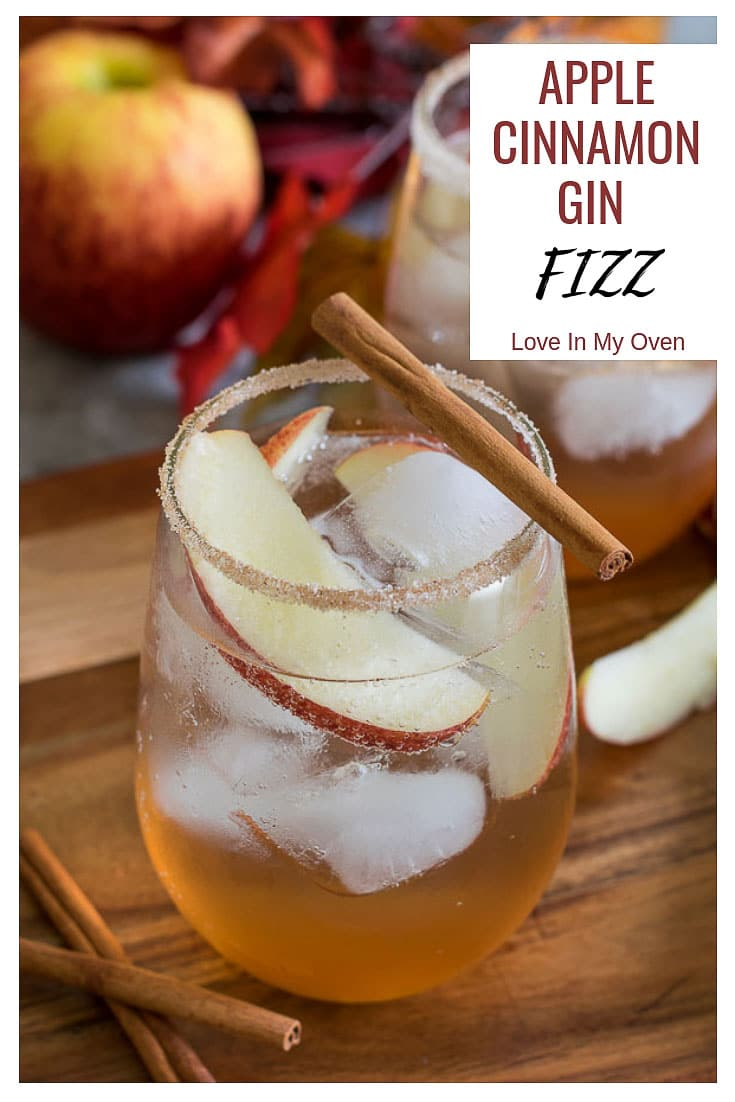 A fall cocktail made with homemade apple cinnamon syrup, mixed with a splash of gin and topped up with some bubbly soda water. Cheers!