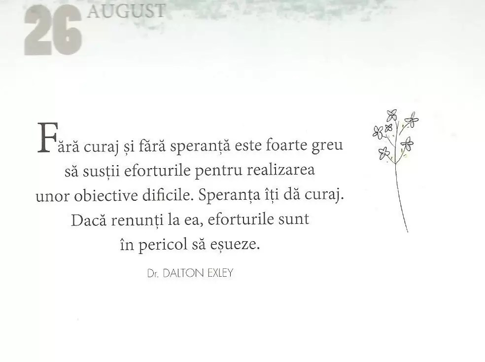 26 August