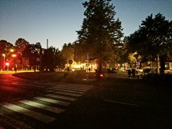 night-life-at-the-round-about
