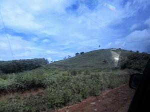 Road to Pandan (15)