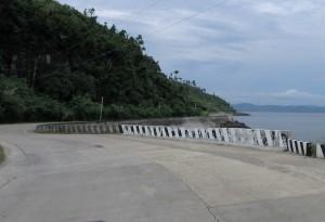 Drive to Samar (8)