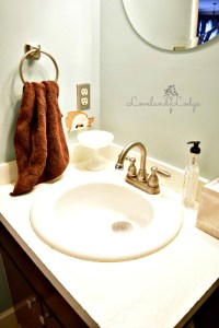 Hall Bath Renovation Update