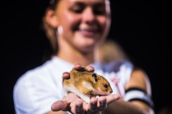 "Colleen ""Jelly"" Swift shows Loveland Magazine the team's pet"