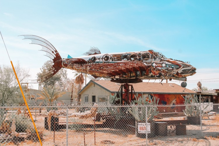 Bombay Beach Fish Airplane