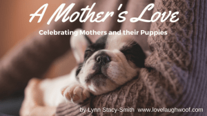 A Mother's Love Celebrating Mothers and their Puppies