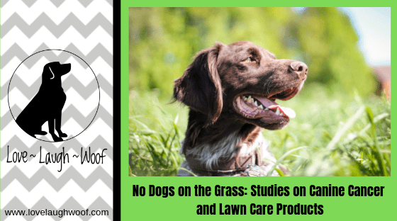 No Dogs on the Grass: Studies on Canine Cancer and Lawn Care Products