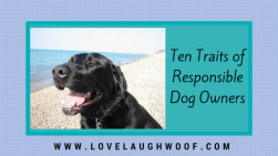 Ten Traits of Responsible Dog Owners