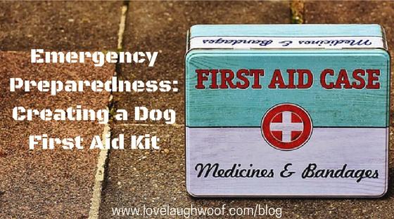 Emergency Preparedness: Creating a Dog First Aid Kit