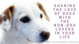 Sharing the love of dogs with  The Non-Dog Lovers in Your Life
