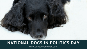 National Dogs in Politics day