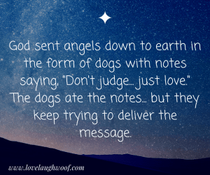 """God sent angels down to earth in the form of dogs with notes saying, """"Don't judge... just love."""" The dogs ate the notes... but they keep trying to deliver the message."""