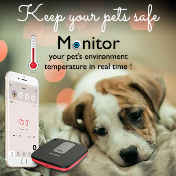 RV Pet Safety Monitor sponsor of Love Laugh Woof