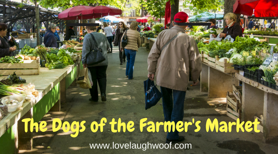 the dogs of the farmer's market love laugh woof