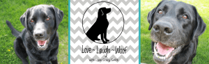 Love Laugh Woof Helping you live a happy, healthy life with your dog
