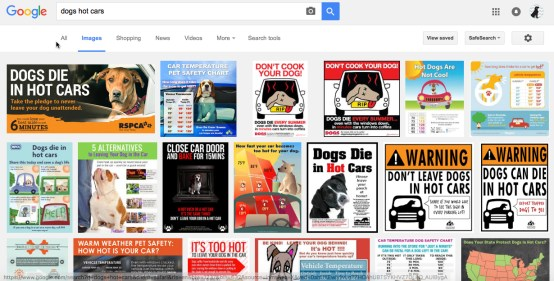 dogs hot cars goodle search screenshot