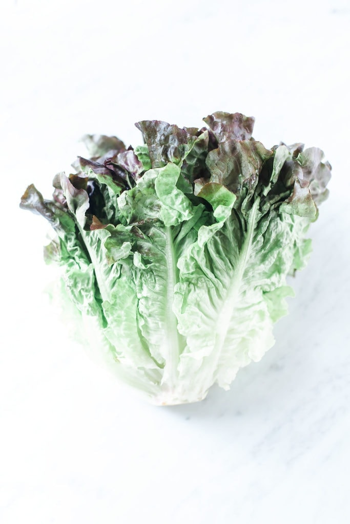 Head of lettuce from the side.