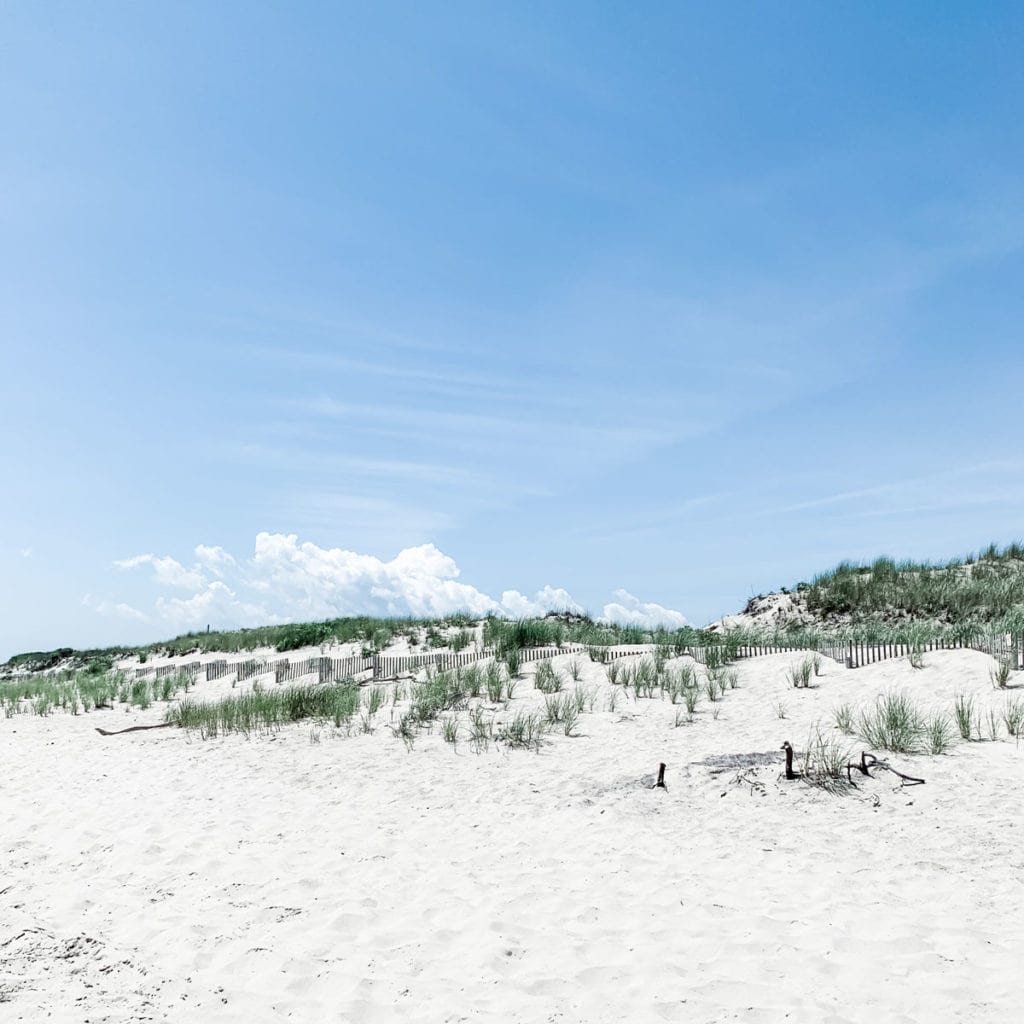 Beach dunes in Southampton, New York.