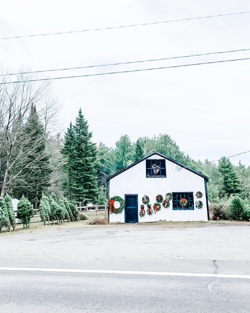 Small white barn selling Christmas trees.