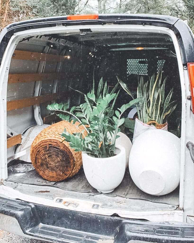 Back of a van full of plants.