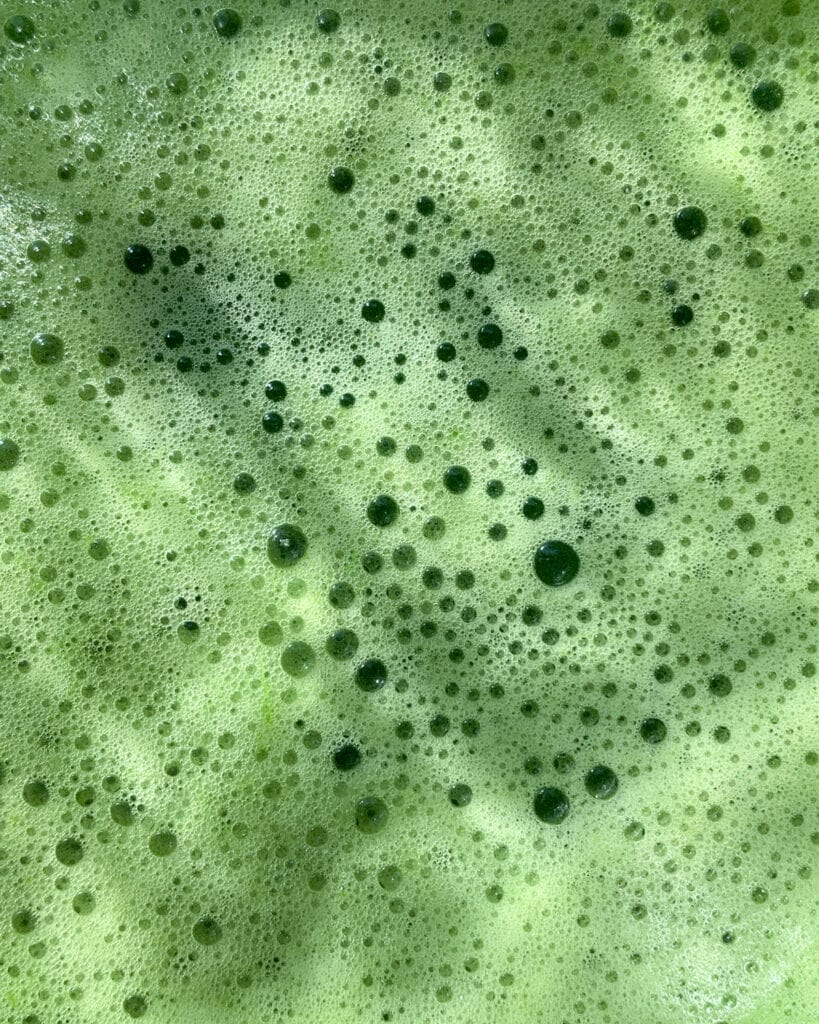 Close-up of green juice.