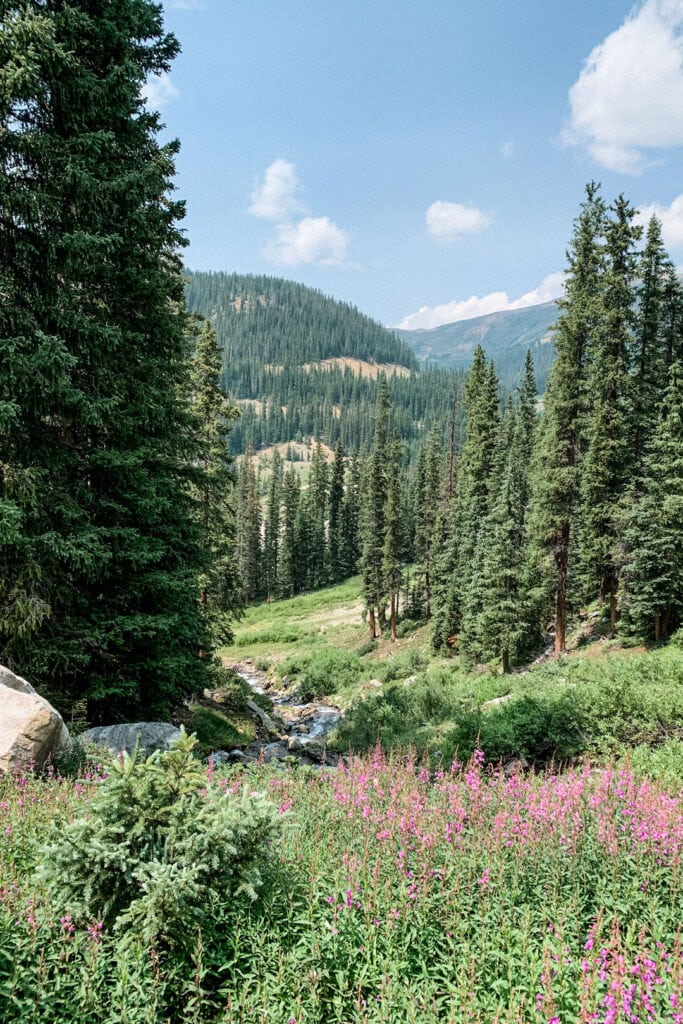 View of mountains and trees in Keystone Colorado.