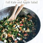 Fall kale and apple salad in a big metal bowl.
