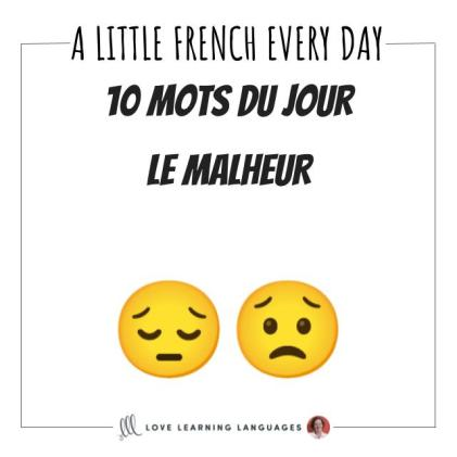French Vocabulary list 10 words about misfortune