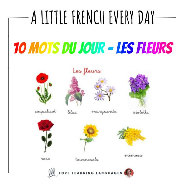 French Vocabulary list - 10 words about flowers