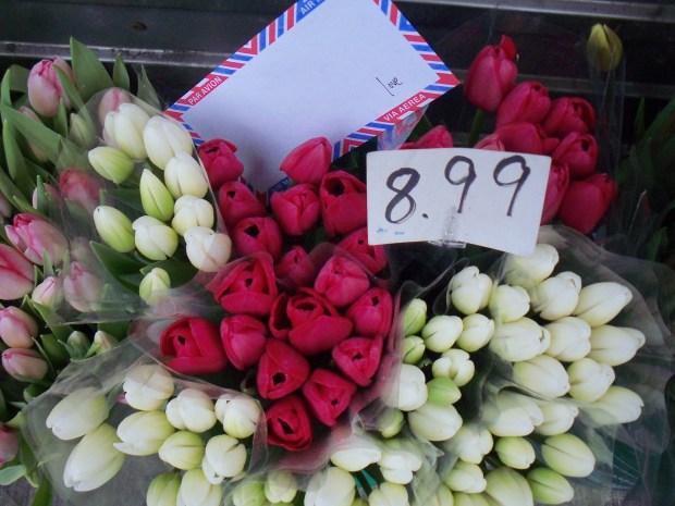 tulips, toronto, love lettering project, air mail envelope, poem, lindsay zier-vogel