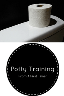 Potty Training From A First Timer