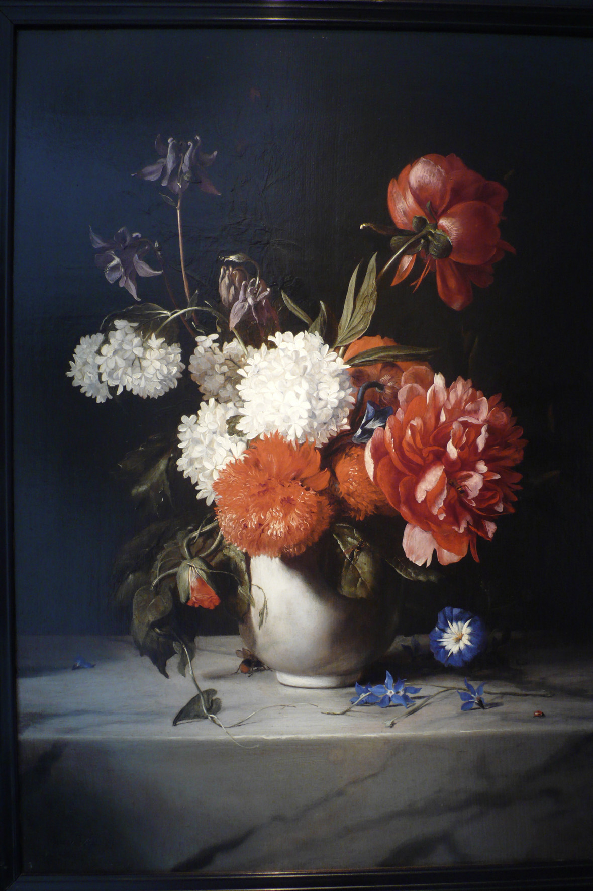 Dutch Flowers X9056-pr