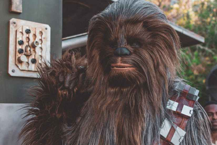 chewbacca of star wars