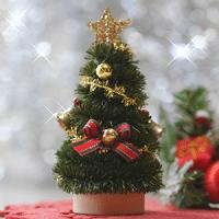 12月7日は「クリスマスツリーの日」です。