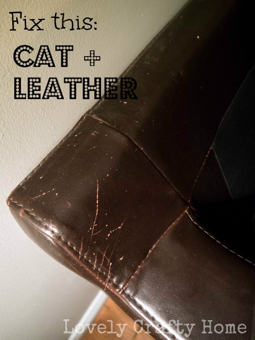 How To Fix Scratched Leather Sofa Www Gradschoolfairs Com