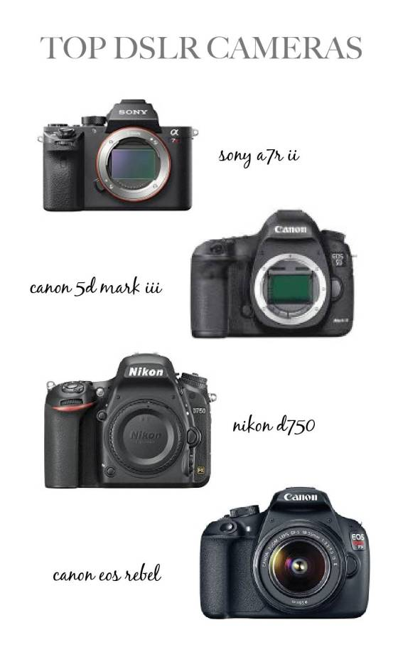 best cameras for beginners and professionals