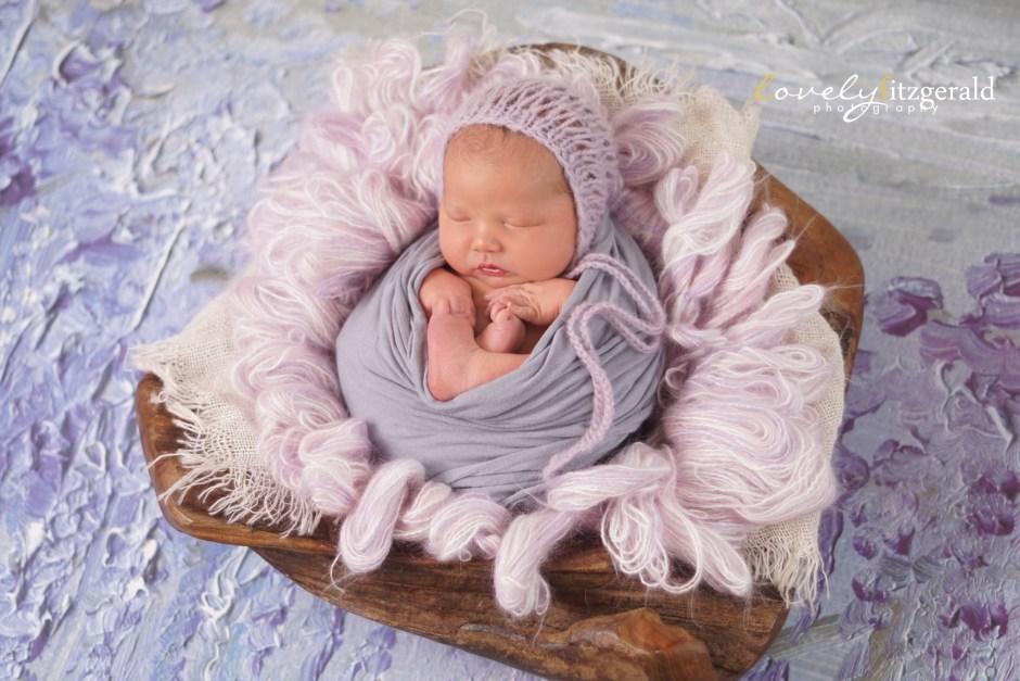 frisco newborn photos