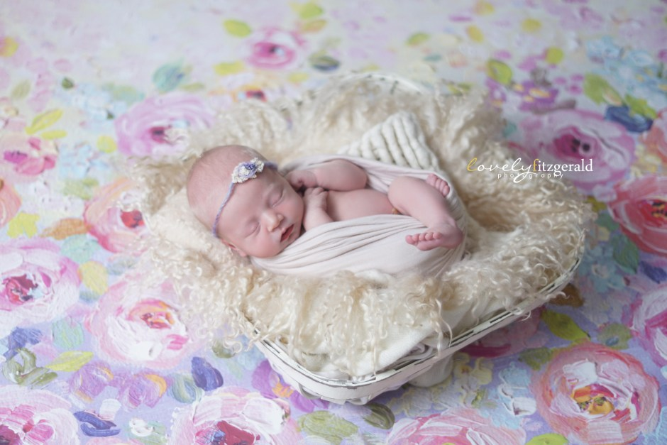 the colony texas newborn photographer