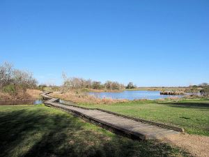 Seabourne Creek Wetlands pond