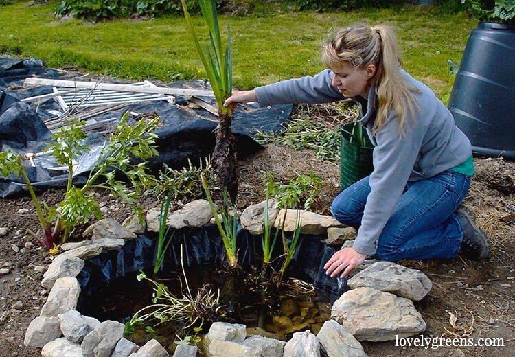 Building Garden Pond Slope